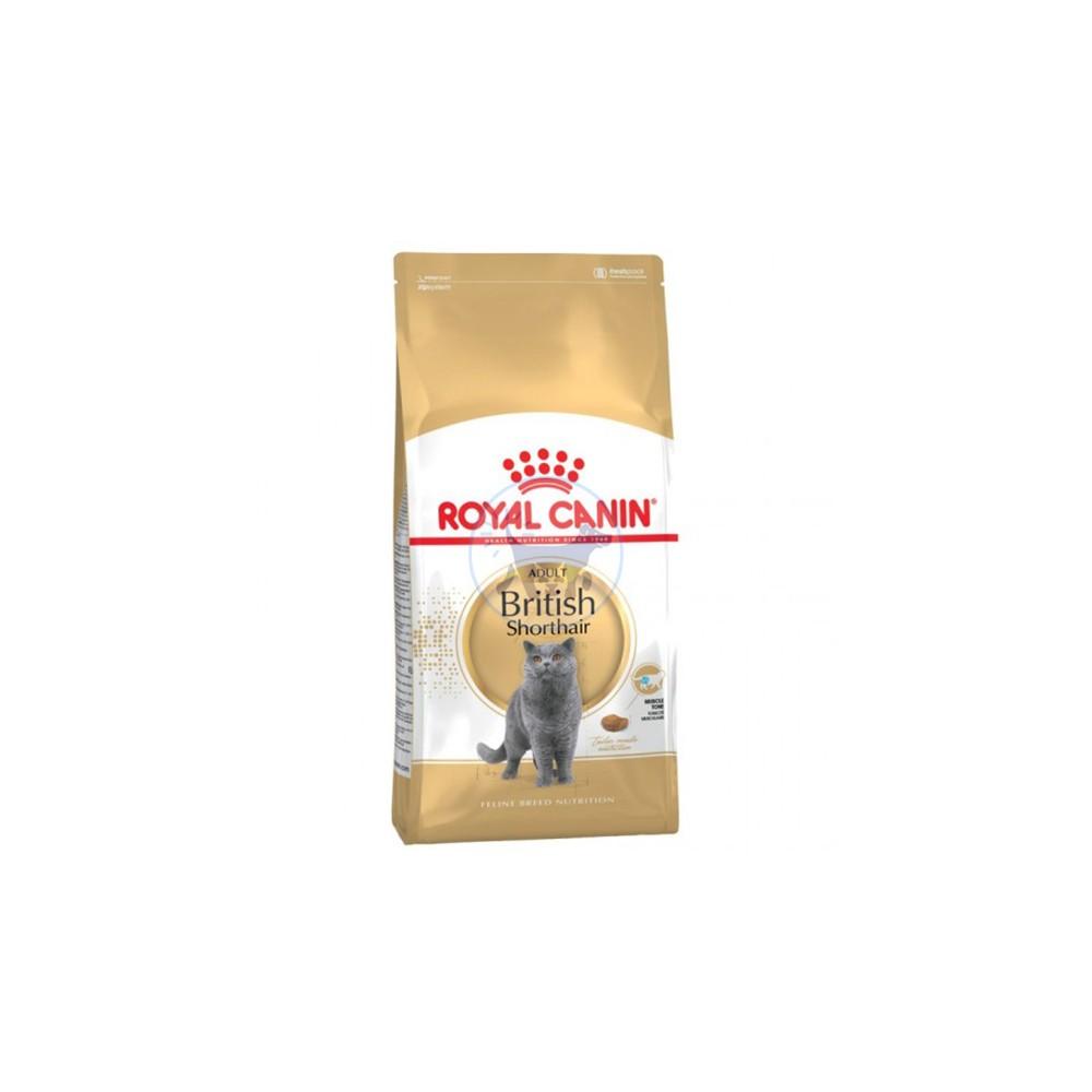 رويال كانين طعام جاف للقطط البريطانية قصيرة الشعر البالغة 2كجم