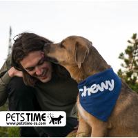 هل تشعر الكلاب بصاحبها ؟